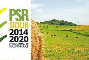 psr2014-2020 sicilia